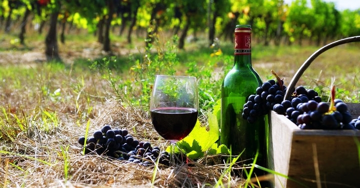 armenian-wine
